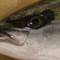 eyecatch2